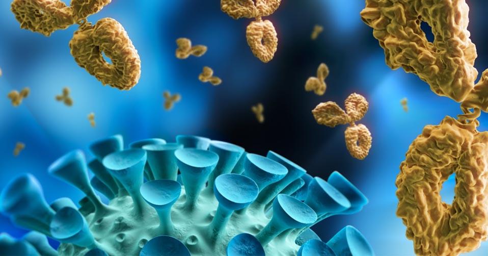 Coronavirus and immunological perspective